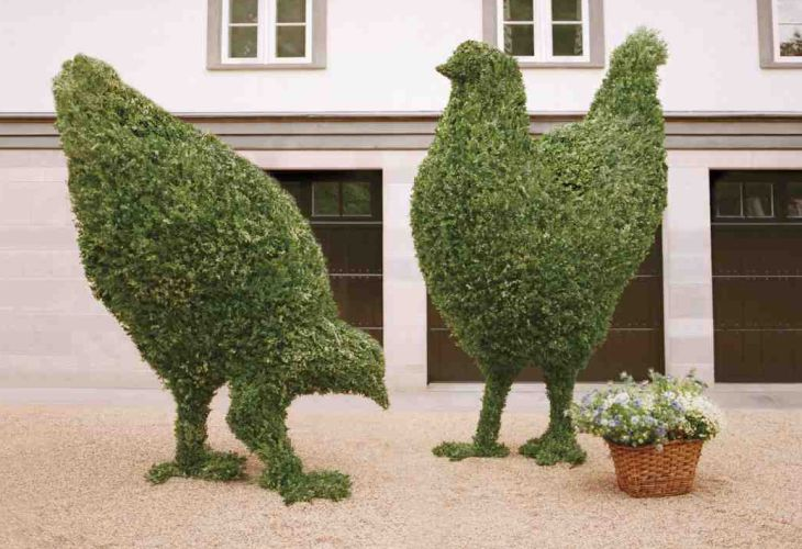 10 animal shaped topiary