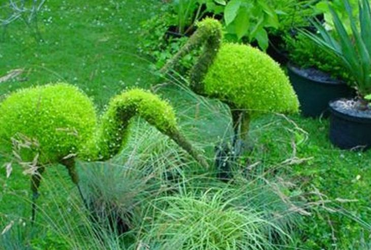 11 animal shaped topiary