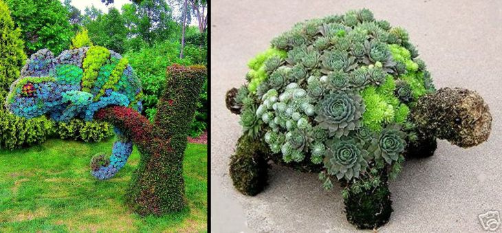 16 animal shaped topiary