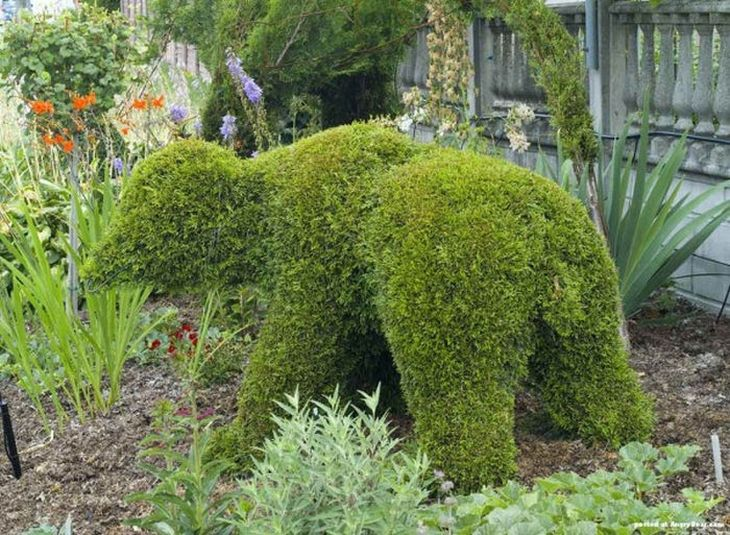 17 animal shaped topiary