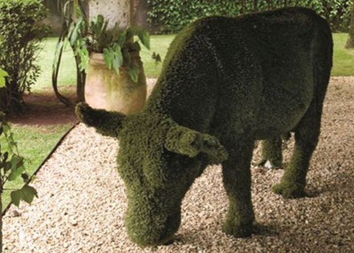 18 animal shaped topiary