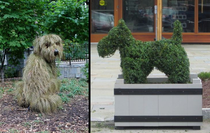 2 animal shaped topiary
