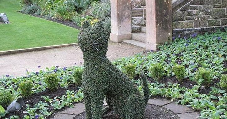 5 animal shaped topiary