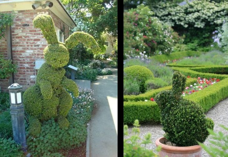 6 animal shaped topiary