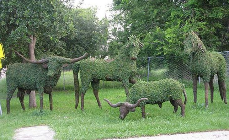 7 animal shaped topiary