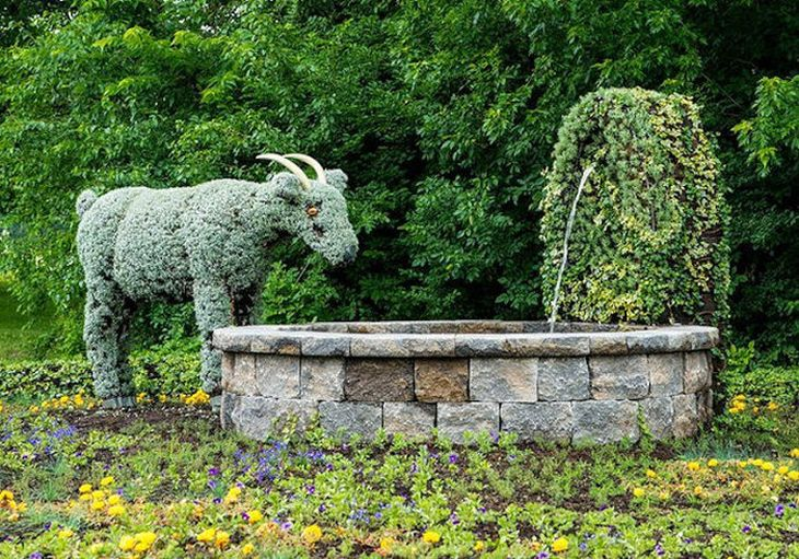 8 animal shaped topiary