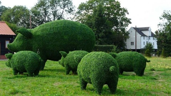 9 animal shaped topiary
